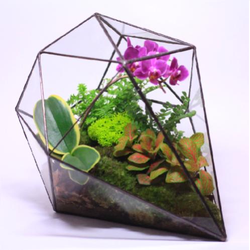 """Сад в стекле """"Признания в любви"""""""